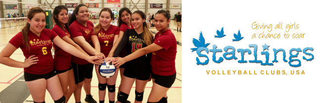 Starlings_Volleyball