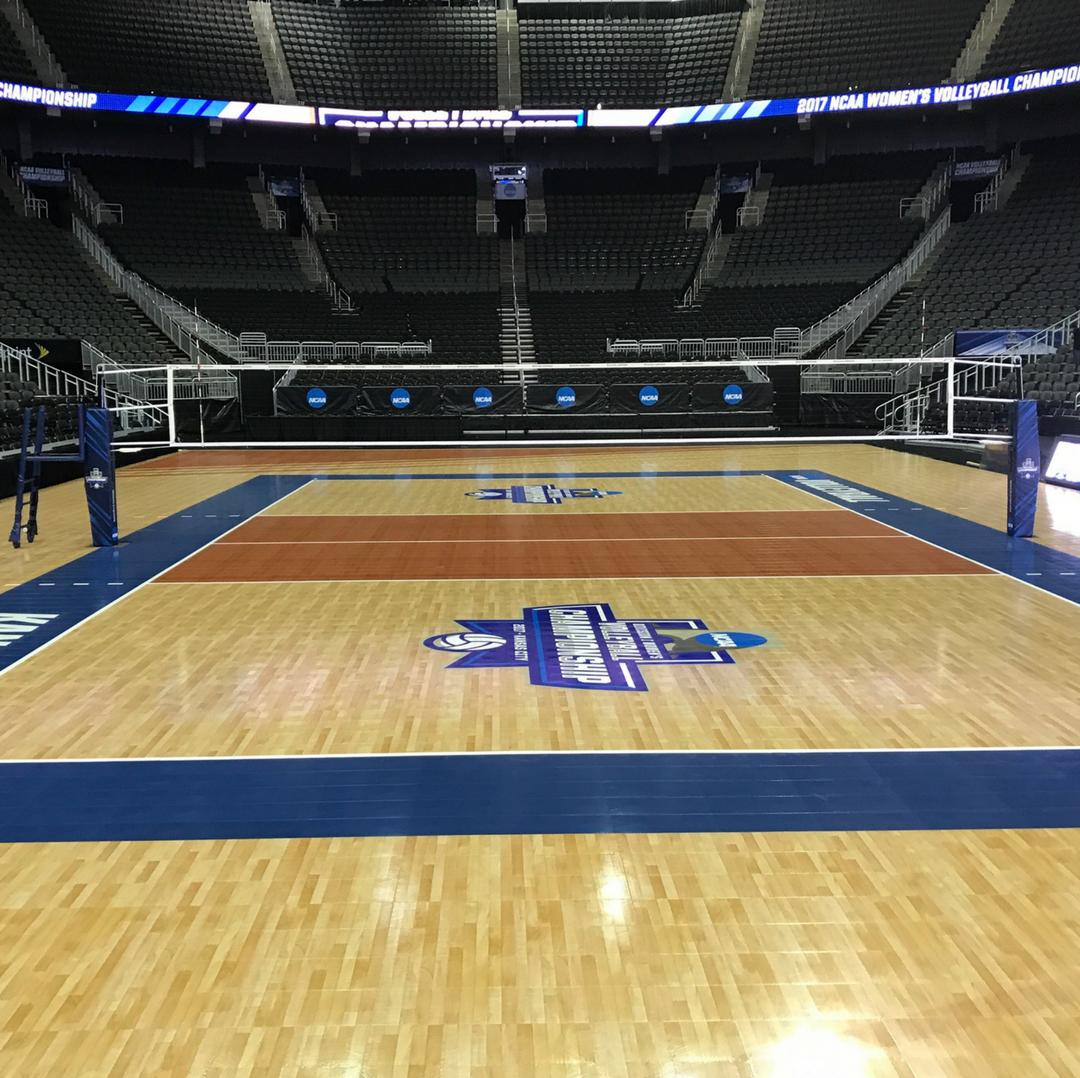 Senoh Professional Volleyball Net