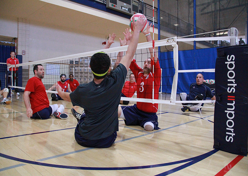 Regulation Sitting Volleyball Net Height Men's and Women's Teams